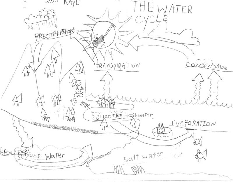 LTR_2013Water_Cycle_0001