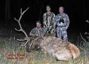 Elk Hunt Photos