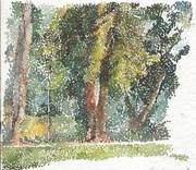 Golden trees at Ulsoor