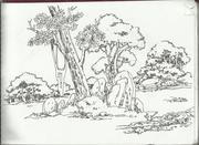 my pen sketches