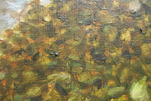 6 painting shore tranparent