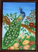 My latest artwork. Peacock!!