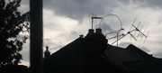 aubrey road roofscape with squirrel