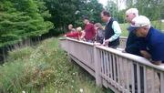 Tour of Strongsville Backyard Preserve