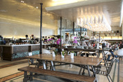 tashas morningside