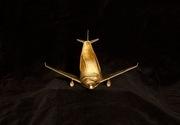 ERa Shoefly - The Golden Airline