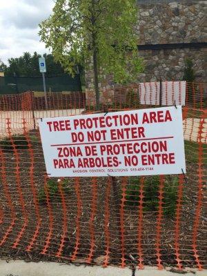 tree protection