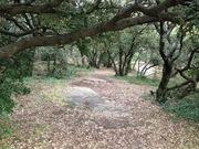 Plateau de Ganagobie (04)