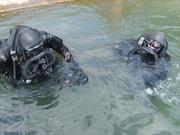 EX-military Divers