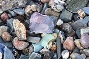 Boston Beach Glass