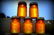 Sandoval County Beekeepers