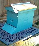 8 Frame Hives