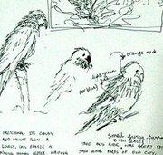 Hyderabad Sketchbook Club