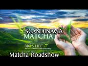 Matcha-Magic
