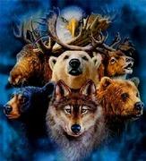 L'animal, le Totem et l'Astrologie