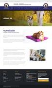 Cheap Dog Daycare