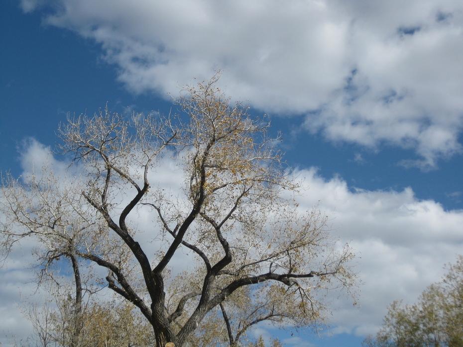 Fall sky downtown Boulder