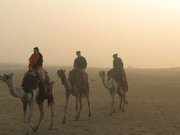 Egypt - me3