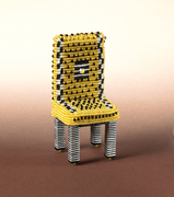 CERF Chair2006