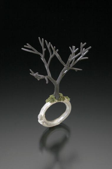 Winter Tree Ring