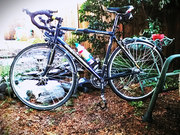 The Mistress. Stolen... Schwinn Fastback Sport, all aluminum road bike.  Old frame, but armored tires and sweat equity make it very valuable to me.