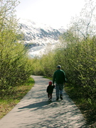 Exit Glacier Trail