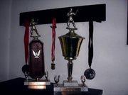 Heavyweight Trophies