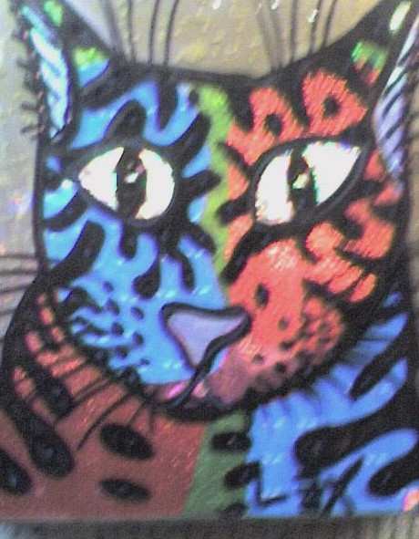red blue cat