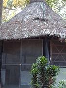 Parque el Pinar 2009 039