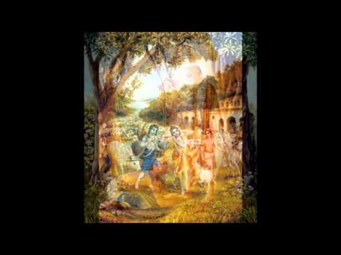 Sri Caitanya-bhagavata, Adi-khanda 01 - Summary of the Pastimes of Sri Caitanya