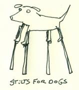 Stilts for Dogs