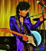 Prince - Tribute Erotic City