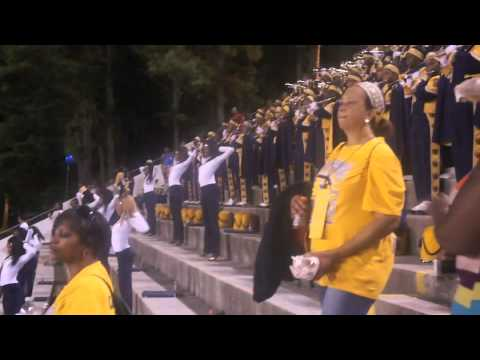 """2012 SouthWest Dekalb """"Marching Panthers"""" in the stands"""