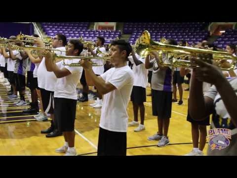 In the Stone | Boogie Wonderland - PVAMU Marching Band (2016)