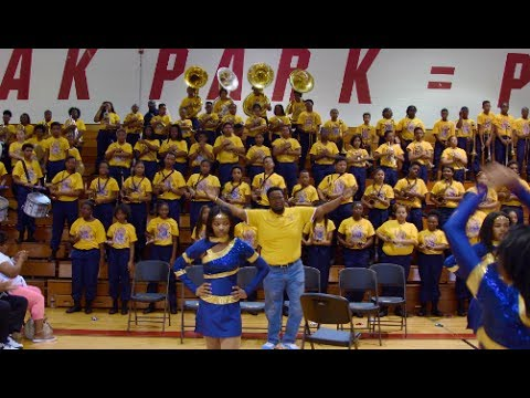 Levey Middle School Marching Band - The Jungle - 2017