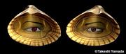 Eyes of Mermaid (Sea Goddess)
