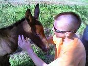 Spike was foal 4/8/09