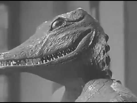 Alligator Slayer.