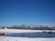 winter 2010-jan 065