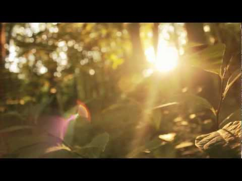 3CK featuring Omogo Reloaded- iPray (Official Video)