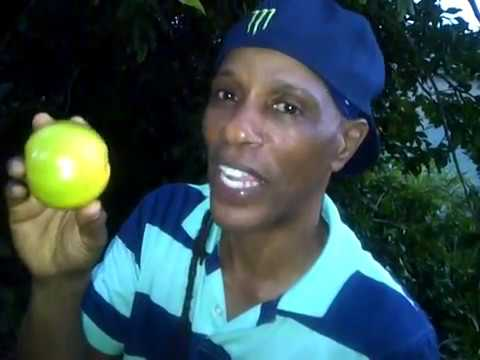 The benefits of lime - Grenada's Master Herbalist Patrick Delves
