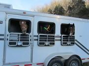 Take us home!!!! FEED US!!!