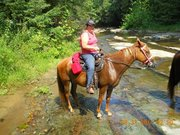Me and Clementine 9 1 2011 at Sulpher Creek