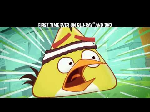 Angry Birds Toons Season 1 Volume 1