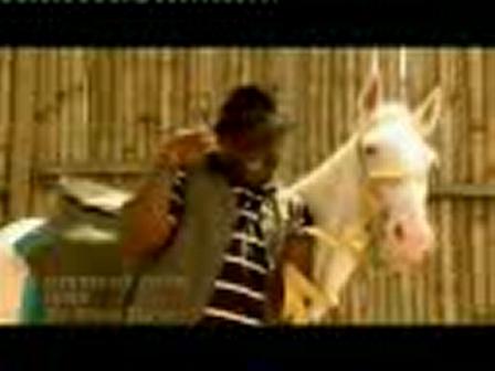 Midnight Crew-Igwe