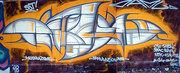 21_damu_reggiani_graffito