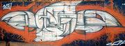 9_damu_reggiani_graffito