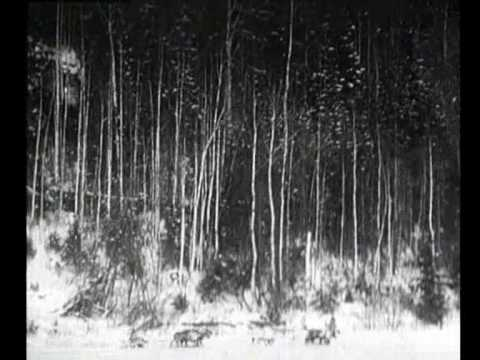 Mansi people from Lozva and Sosva part 2 (1945)