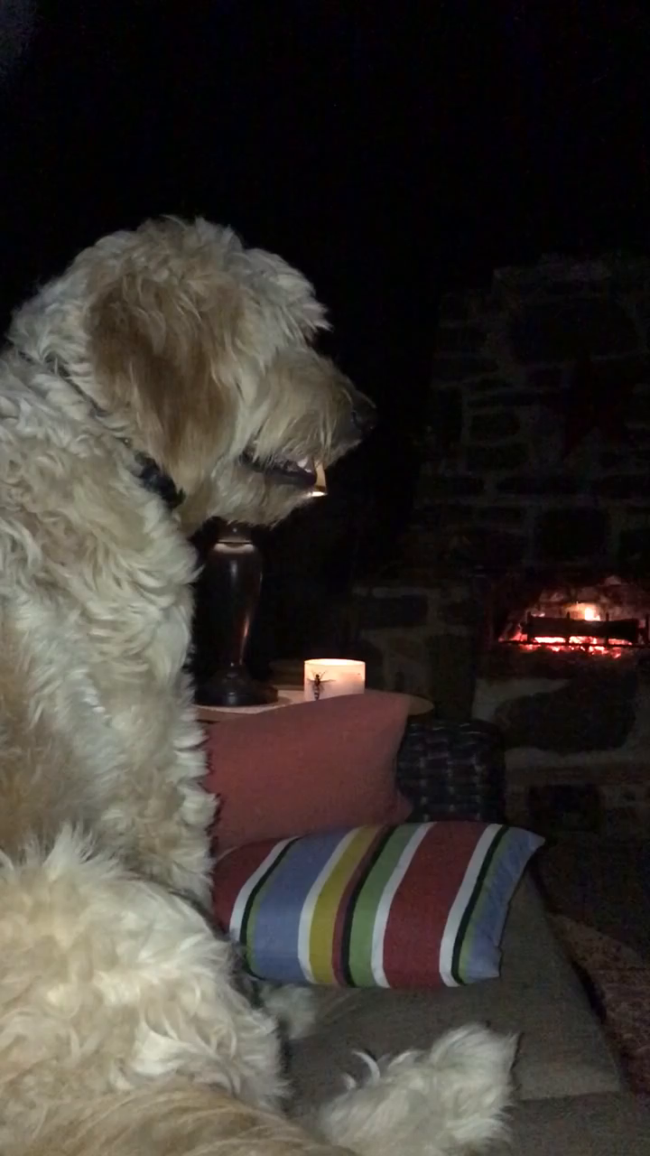 Enjoying a fall night