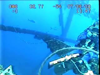 something for you offshore divers